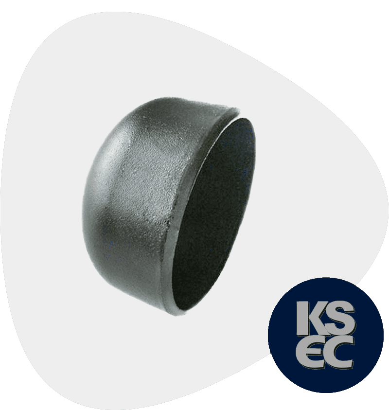 AISI Butt weld End Cap