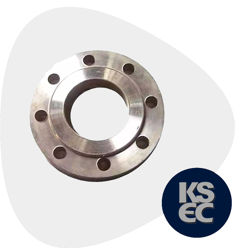 Stainless Steel Raised Face Forged Flanges