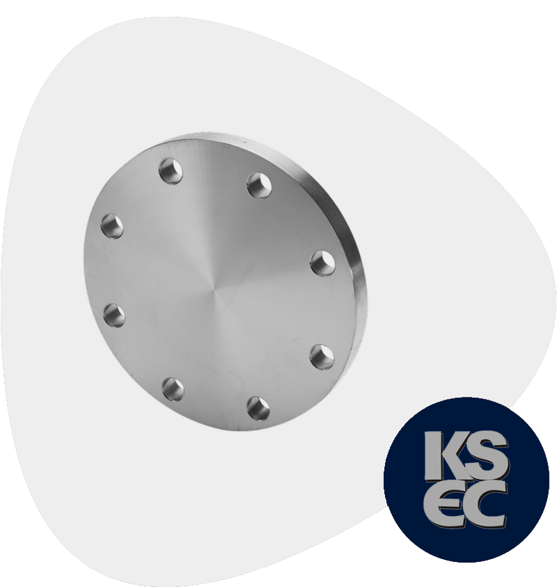 Stainless Steel BLRTJ Flanges