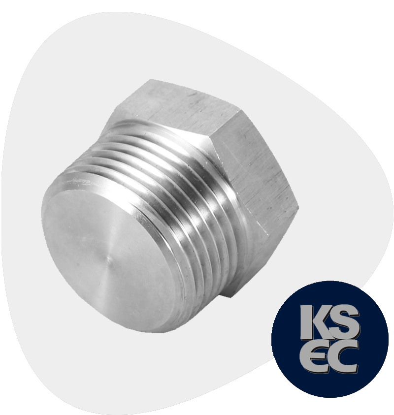 Duplex/Super Duplex Steel Forged Threaded Hex Head Plugs