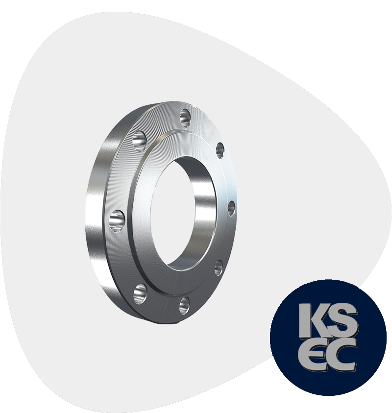 Stainless Steel Flat Face Forged Flanges