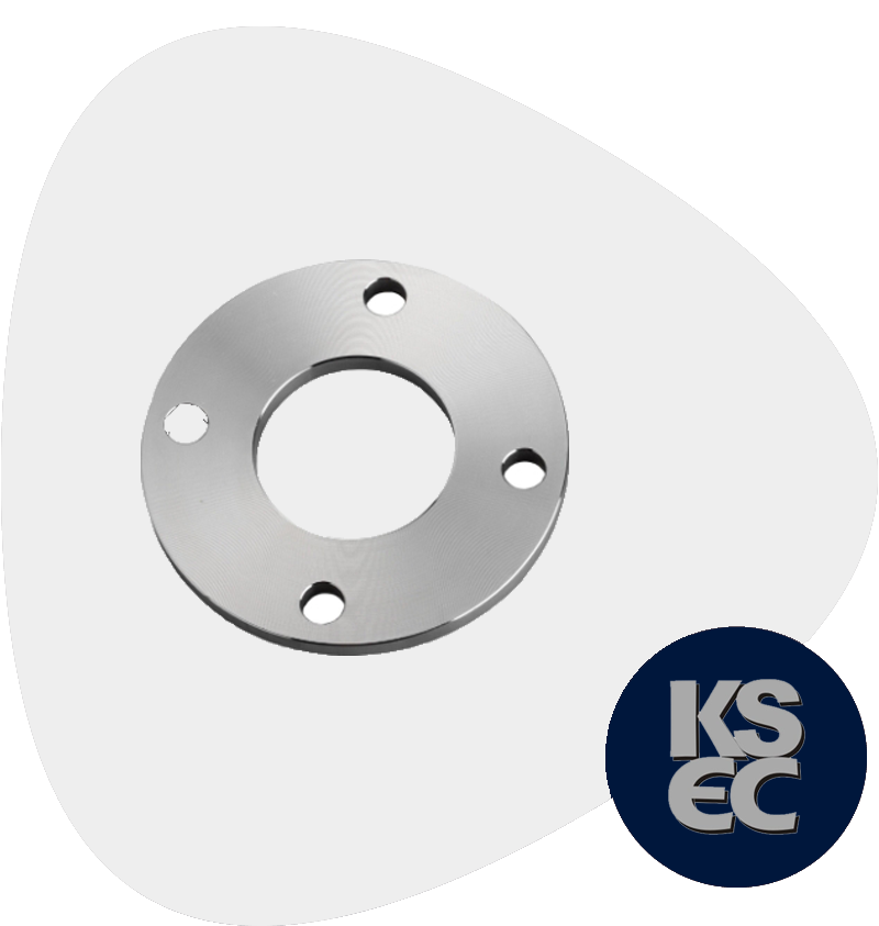 Stainless Steel Raised Face Plate Flanges