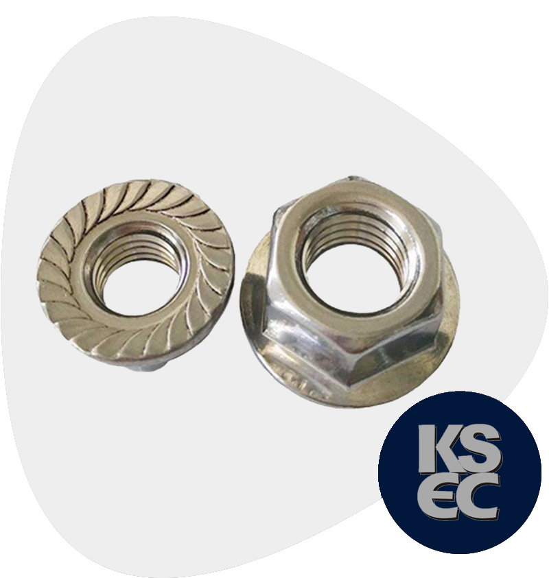 Hastelloy Flange Nuts