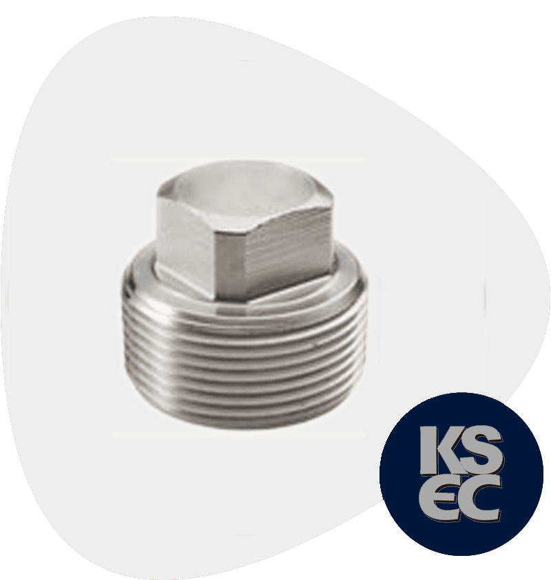 Stainless Steel 316Ti Forged Plug