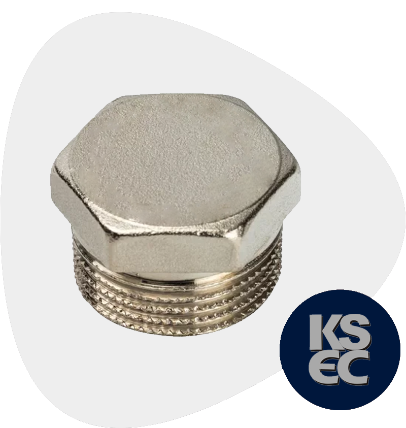 Stainless Steel Forged Threaded Hex Head Plug